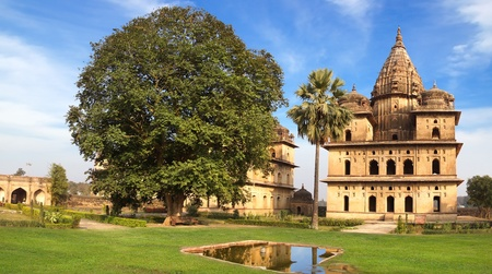 madhya pradesh: Picturesque landscape with cenotaphs  Orcha, India