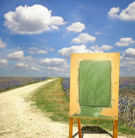 Picturesque landscape with Easel and walkway on the cornflower plantation  photo