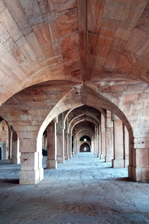 Ruins of Afghan architecture in Mandu, India.