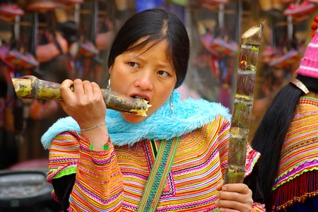 cau: CAN CAU, BAC HA VIETNAM - January 02, 2011-The young woman eats sugar cane at Can Cau market. Flower Hmong are some of the most colourfully dressed; January 02, 201 1in Can Cau, Bac Ha, Vietnam