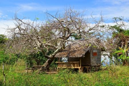 broken house: Picturesque landscape with hut. Apo island, Philippines