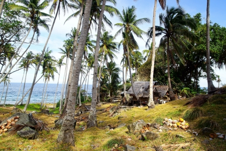 Picturesque landscape with hut. Apo island, Philippines photo
