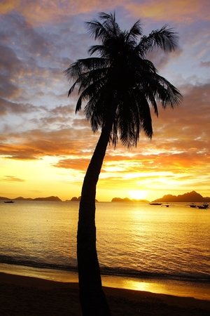 Sunset at Corong corong beach. El Nido, Philippines photo