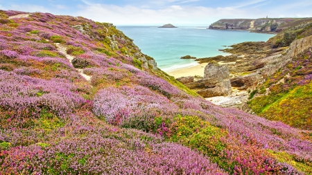 cliff edges: Panoramic view over Cap Frehel,  Brittany, France