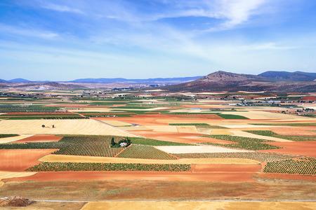 cultivo de trigo: Pintoresco paisaje rural de campos. España Foto de archivo