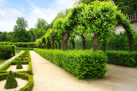 royal park: Landscape with Alley Park in the Wurzburger Residenze.
