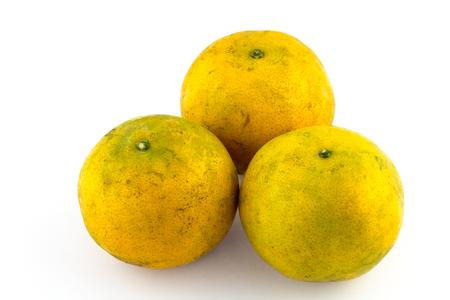 orange mandarins on a white background photo