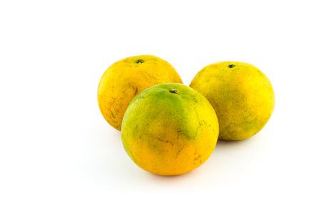 orange mandarins on a white background Archivio Fotografico