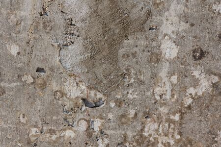 concrete wall painted texture and background