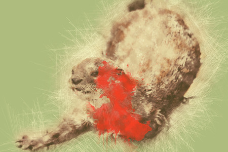 Abstract The loss of  Sea Otter in the wild Otter on watercolor painting background.