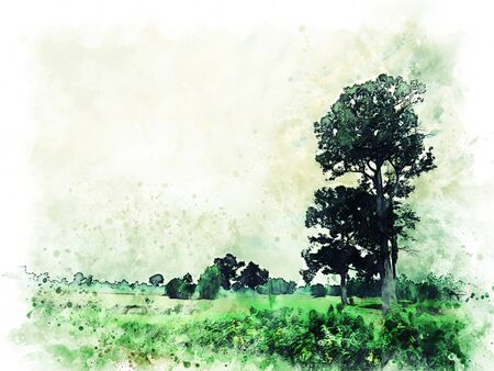 Abstract green colofrul shape tree land field landscape on watercolor illustration painting background. Stok Fotoğraf - 126951465