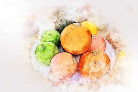 Abstract colorful fruits vitamin collection watercolor illustration painting background.