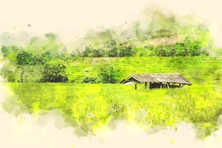 Abstract colorful shape on tree and field landscape in Thailand on watercolor illustration painting background.