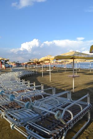 Umbrellas and sunbeds
