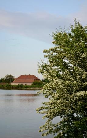 watermill: A watermill in Czech Republic