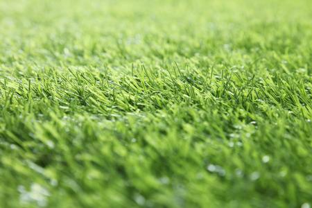 plastic grass close up