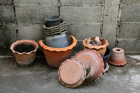 Plant pots for trees, gardening equipment.