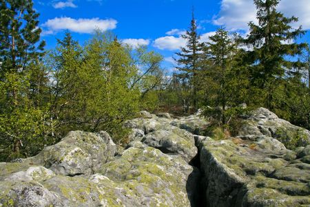 Craggy rocks scenery. Weathered grey cragged rocks in Sudetes / Poland