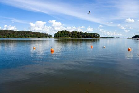 Lake in the forest. View at the wide and calm lake surface in the forest, at sunny day. Blue cloudy sky, flying bird and buoys.