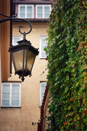 Street lamp hanging against wall with windows and  ivy photo