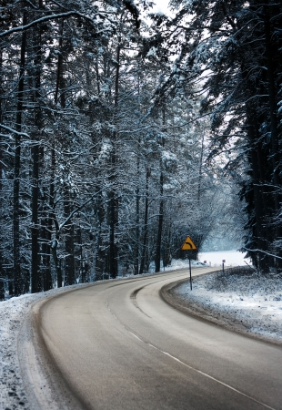Winding road in forest. Road sign curve to left Stock Photo - 6203222