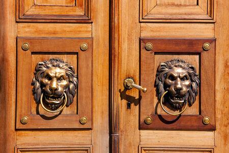 Lions, luxury door knocker