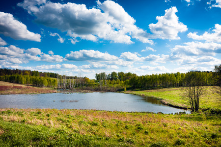 warmia: Lake forest green spring landscape