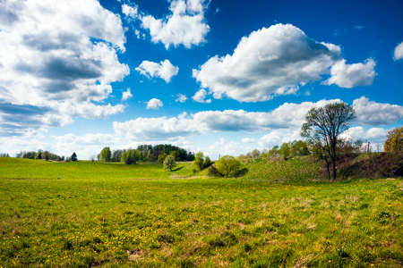 warmia: Grass fields and blue sky clouds