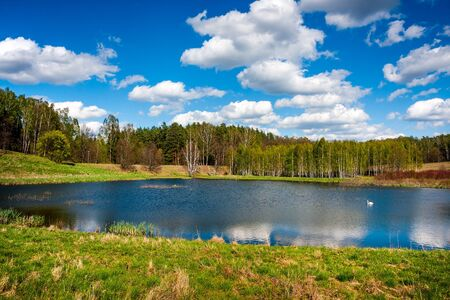 warmia: Forest lake