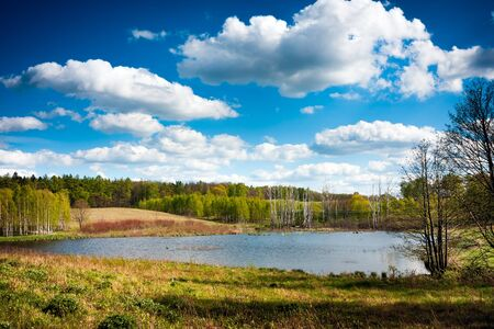 warmia: Lake surrounded by forest, Warmia Masuria. Poland