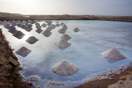 Salt gathered in Santa Maria salt pits Cabo Verde, Africa Stock Photo