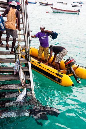 Fishermen  with a fresh tuna fish catch. Santa Maria Editorial