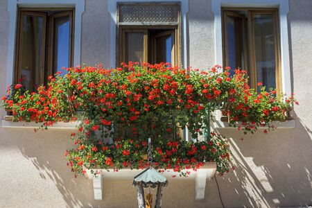 flowery balcony, typical of the mountain villages of Trentino and Veneto Archivio Fotografico
