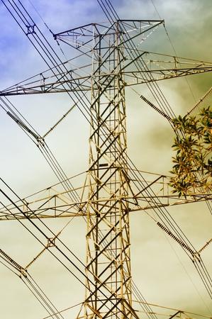 electric grid: voltag ploe