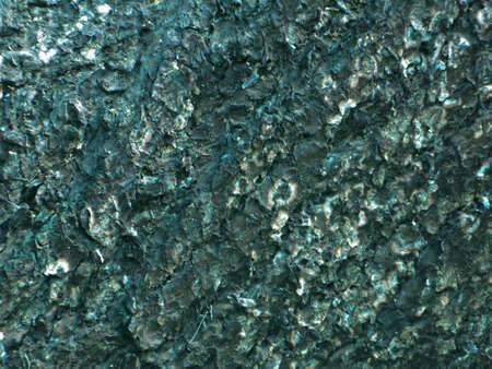 up: Bark tree close up
