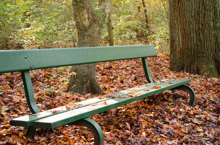 Bench in the autumn park 스톡 콘텐츠