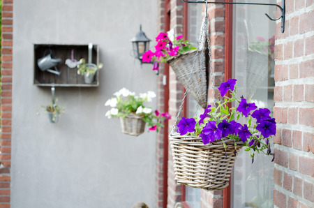 Baskets with flowers hanging on the wall Stock Photo