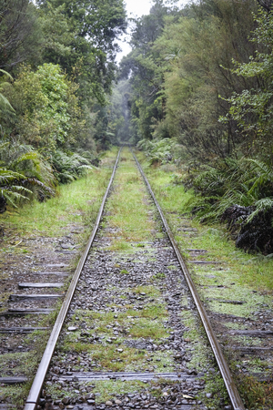 Train tracks in New Zealand Bush Stock Photo