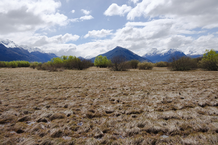 Marshland with Mountains in Glenorchy, South Island, New Zealand Stock Photo