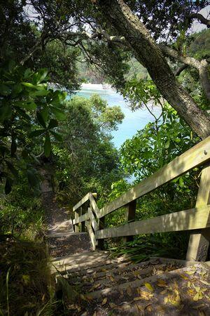 Beautiful coastal track Bay of Plenty, New Zealand Stock Photo