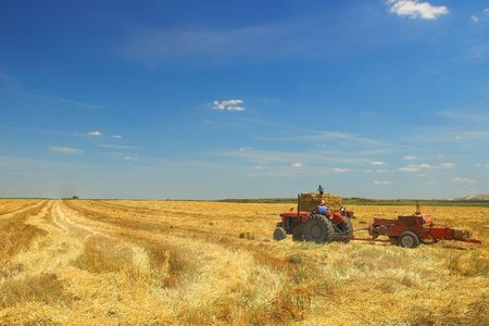 Harvest - Tractor in the Field Stock Photo
