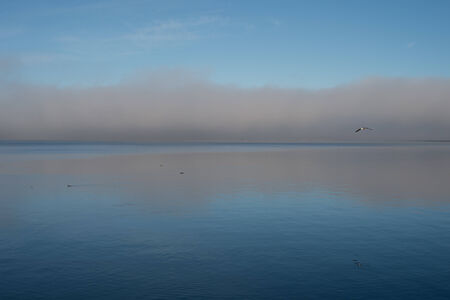 Reflection of fog on morning water