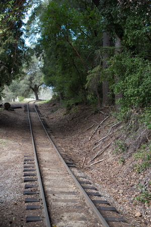 industrialization: Train tracks in the forest