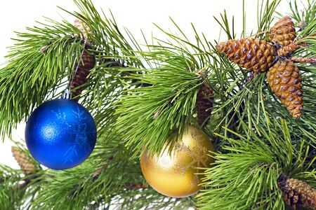 Pine branches with New toys  isolated on white background Stock Photo - 11278842