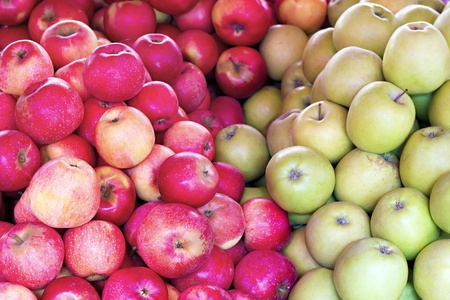 bunch of red and green apples closeup as a background Stock Photo - 13109964