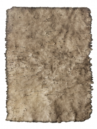 old cracked sheet of parchment in grunge style isolated on white background photo