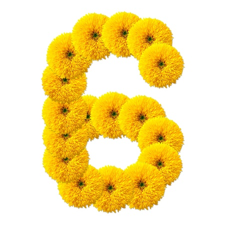 decimal: decimal cipher of flowers isolated on white background Stock Photo