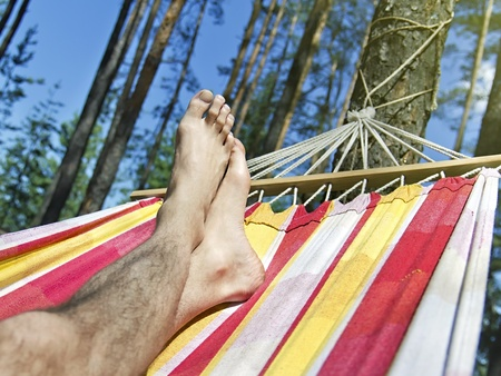 feet in the hammock on a background of pine forest photo