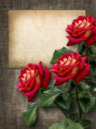 Card for invitation or congratulation with red roses in vintage style photo