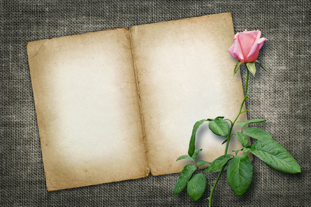 Card for invitation or congratulation with yellow rose in vintage style photo